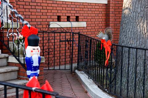 リス発見:ニューヨークご近所クリスマス散歩