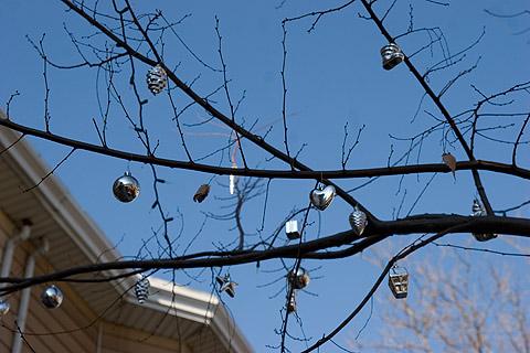 街路樹クリスマス・オーナメント:ニューヨークご近所クリスマス散歩