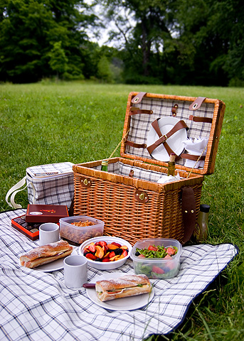公園ピクニック