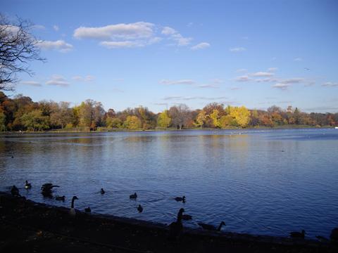 プロスペクトパーク湖:ニューヨークの秋