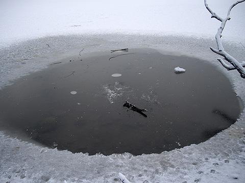 雪の公園・凍った湖