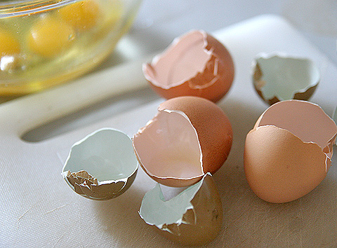 鶏の卵の殻とキジの卵の殻
