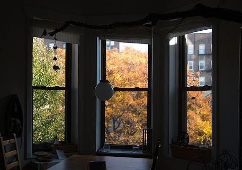 窓の外の秋紅葉風景