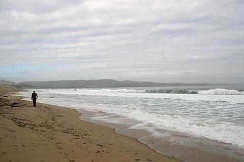 カリフォルニア・モントレーの海