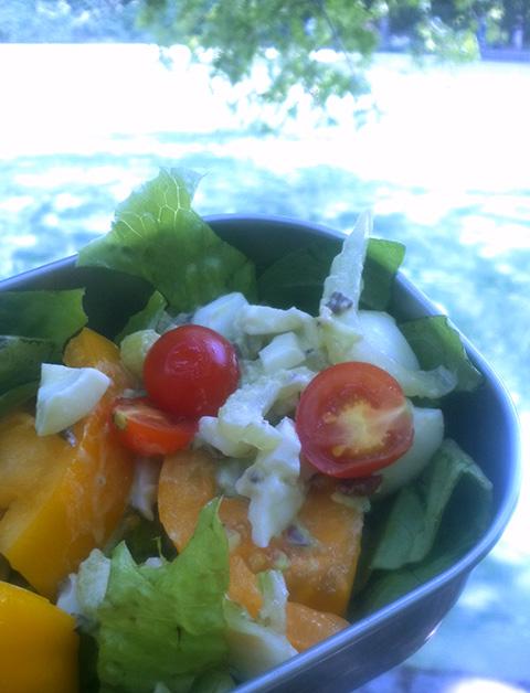 自家栽培プチトマト・サラダ
